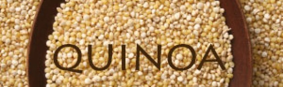 Quinoa – Superfood & Complete Protein Food…