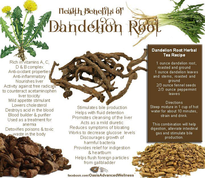 how to make dandelion tea from dried leaves