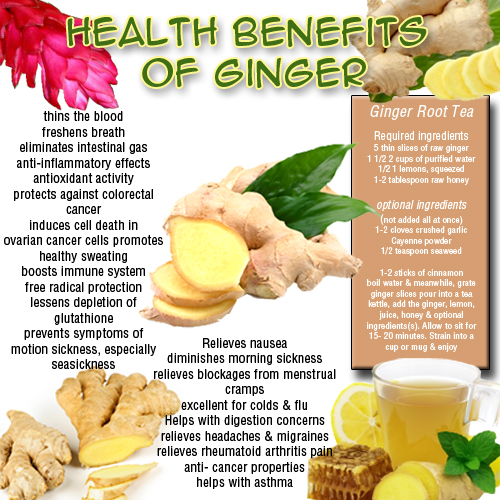 11 Benefits of Ginger That You Didn't Know About - Lifehack