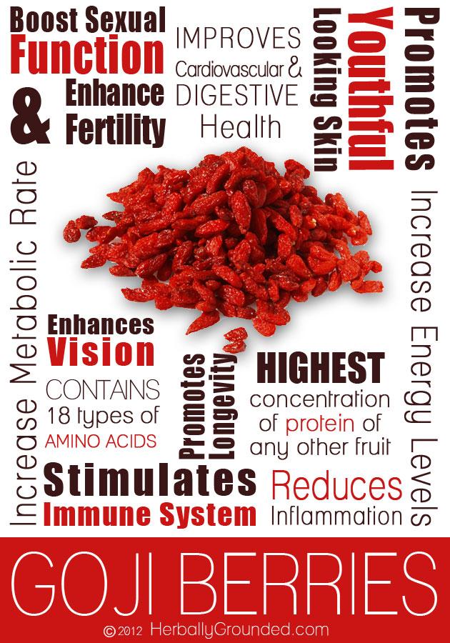 Goji-Berries-infographic