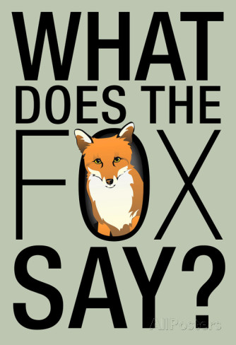 What The Fox ACTUALLY Says!!!